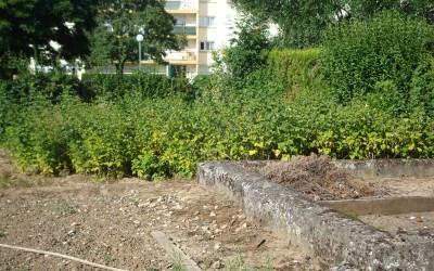 jardin possibles02